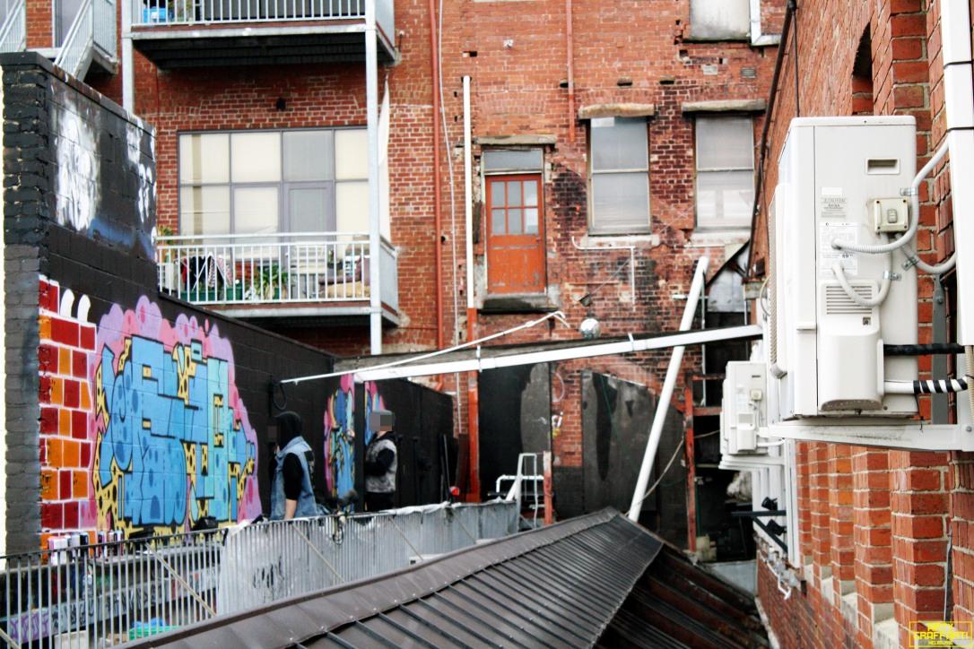 Revolver Upstairs Prahran Flies OG23 Skary Seasons of Change Winter Melbourne Graffiti Arty Graffarti13
