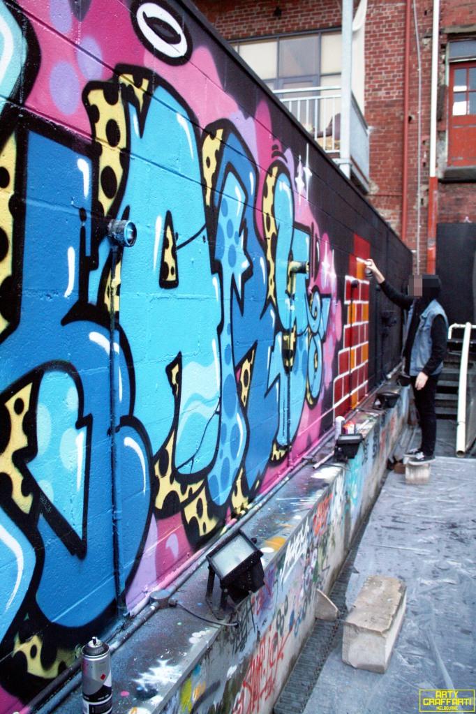 Revolver Upstairs Prahran Flies OG23 Skary Seasons of Change Winter Melbourne Graffiti Arty Graffarti18