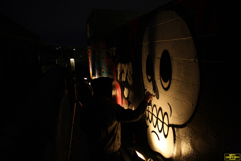 Revolver Upstairs Prahran Flies OG23 Skary Seasons of Change Winter Melbourne Graffiti Arty Graffarti19