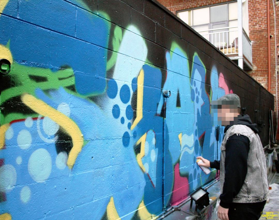 Revolver Upstairs Prahran Flies OG23 Skary Seasons of Change Winter Melbourne Graffiti Arty Graffarti7