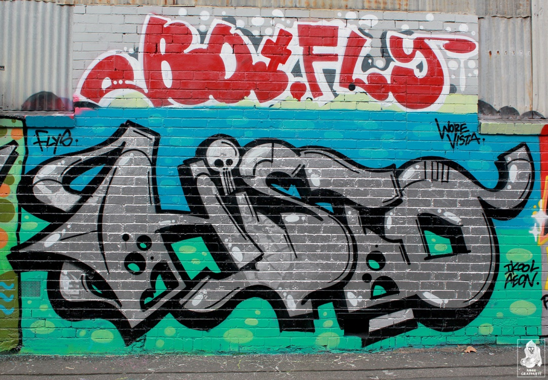 Bolts-Neo-Sage-Histoe-Skary-Nemco-Flies-Collingwood-Graffiti-Melbourne-Arty-Graffarti17
