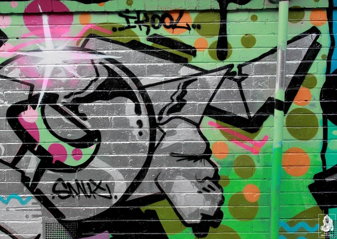 Bolts-Neo-Sage-Histoe-Skary-Nemco-Flies-Collingwood-Graffiti-Melbourne-Arty-Graffarti6