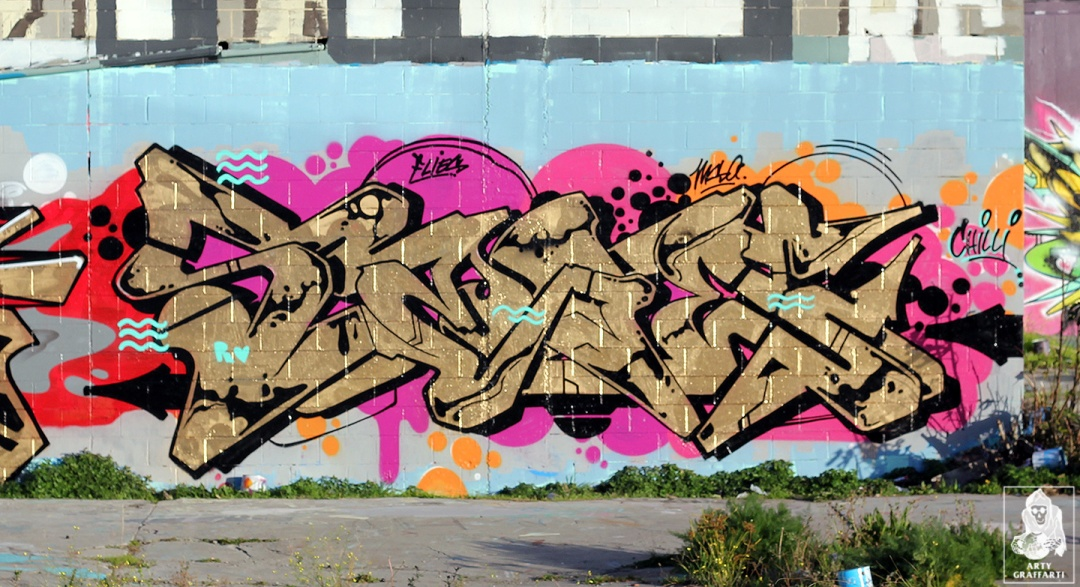 Kill-Flick-Sage-Preston-Graffiti-Melbourne-Arty-Graffarti7