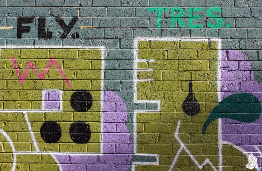Tesco-OG23-Brunswick-Graffiti-Melbourne-Arty-Graffarti5