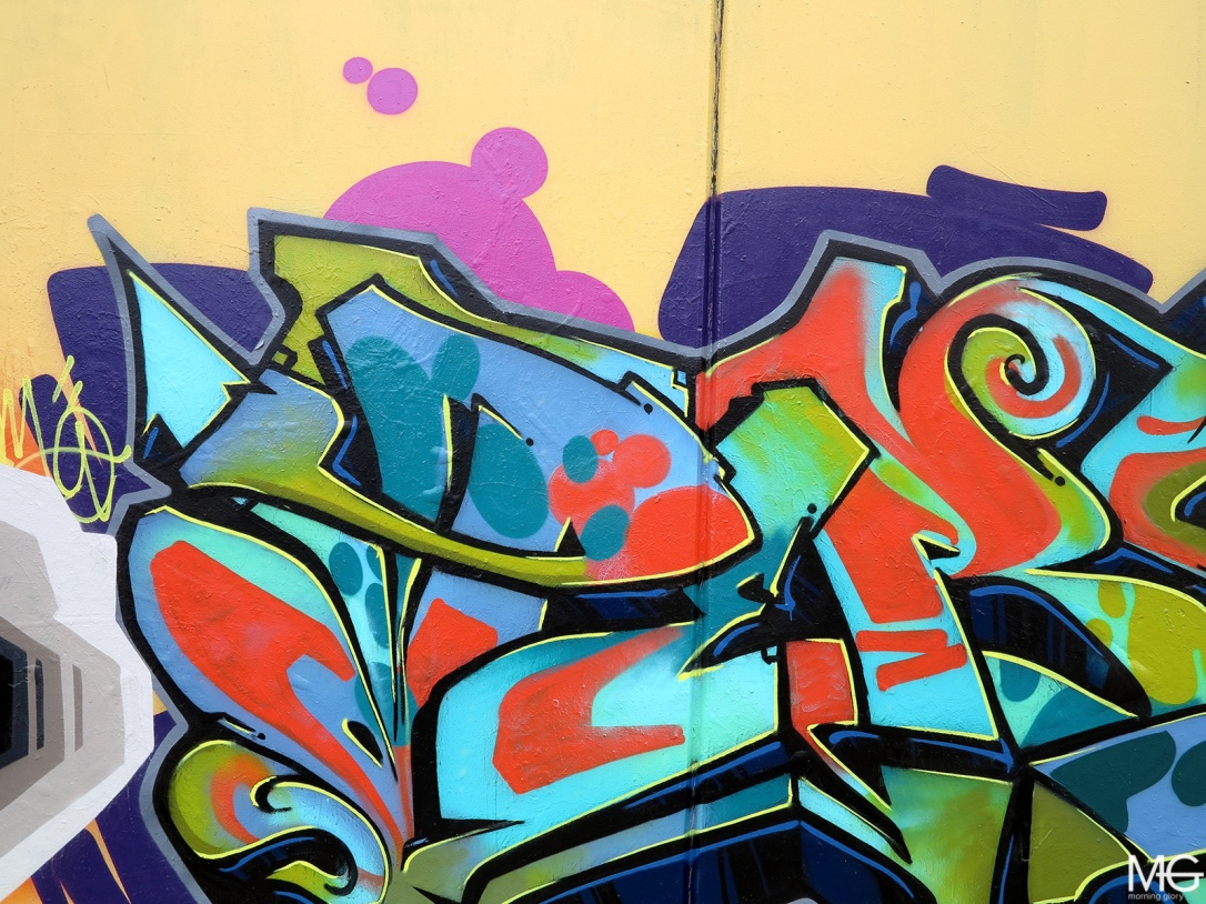Dem189-Zebra-Amuse-Perso-Sirum-Spoke-Clifton-Hill-Graffiti-Morning-Glory-Melbourne6