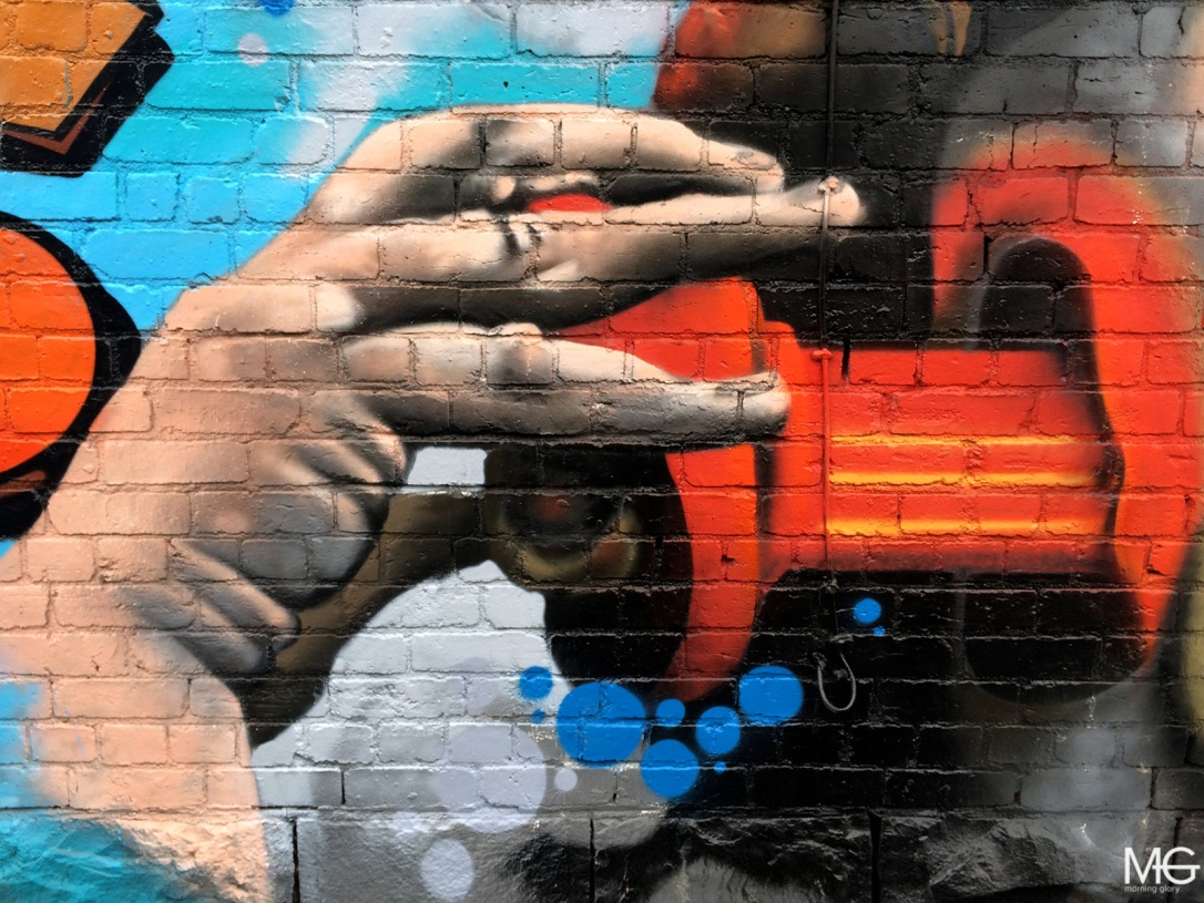Ling-Fitzroy-Street-Art-Morning-Glory-Melbourne2