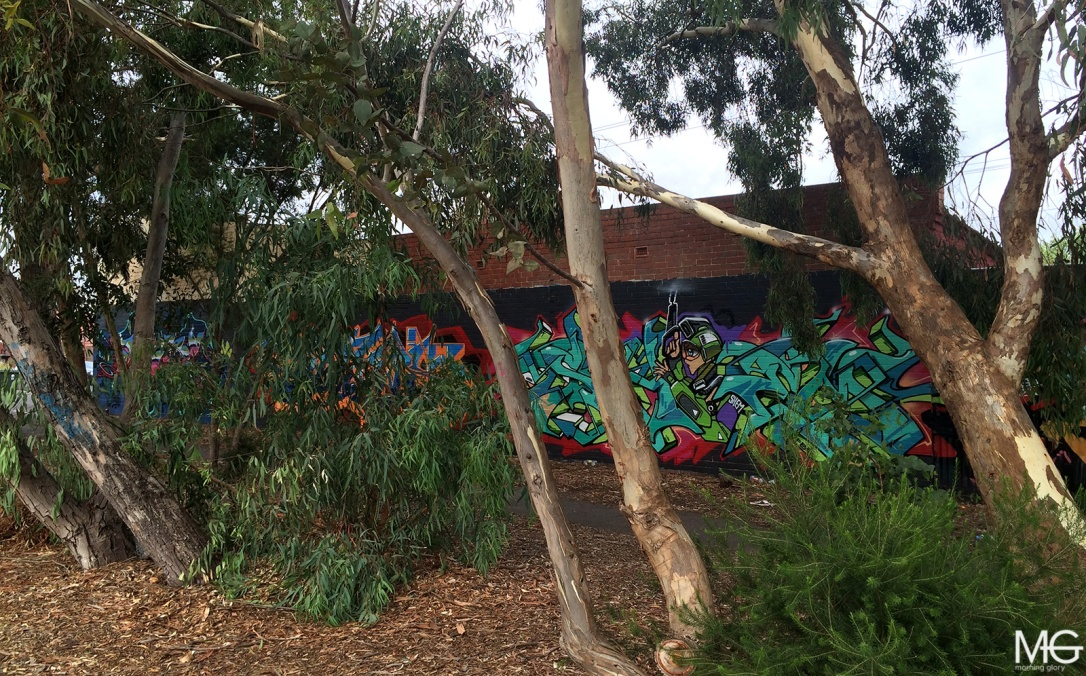 Mine-Amuse-Shem-Graffiti-Brunswick-Morning-Glory-Melbourne