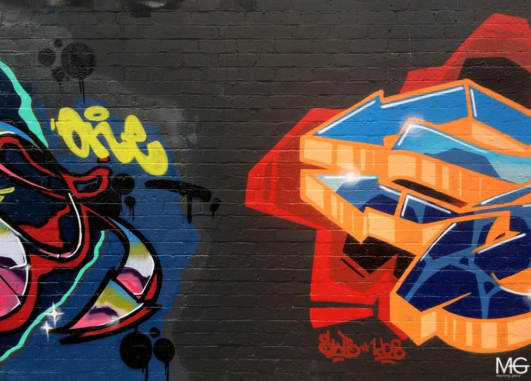 Mine-Amuse-Shem-Graffiti-Brunswick-Morning-Glory-Melbourne2