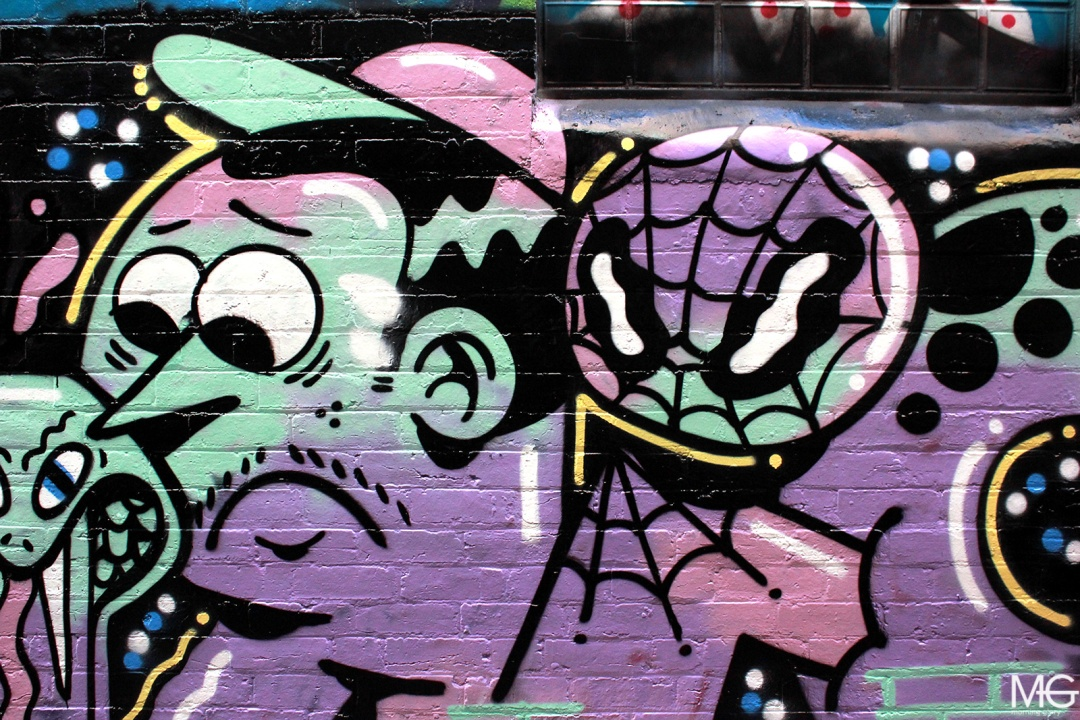 Richt-Skary-Fitzroy-Graffiti-Morning-Glory-Melbourne2