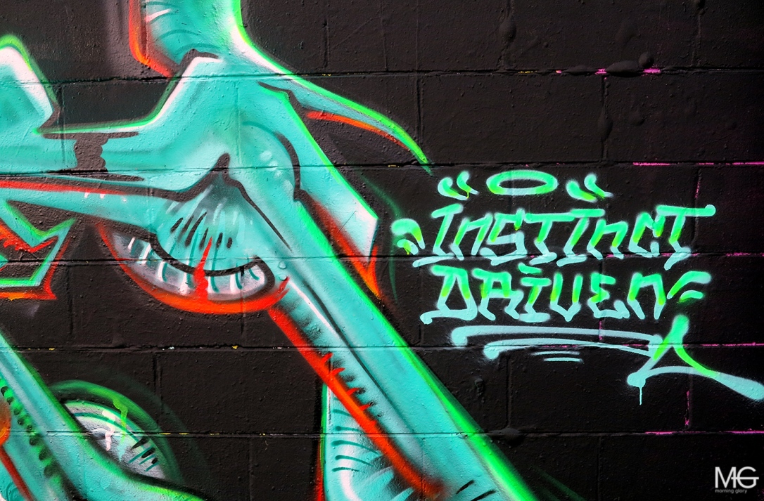 morning-glory-melbourne-graffiti-sage-bailer-preston3