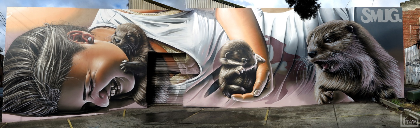 the-fourth-walls-melbourne-street-art-smug-collingwood