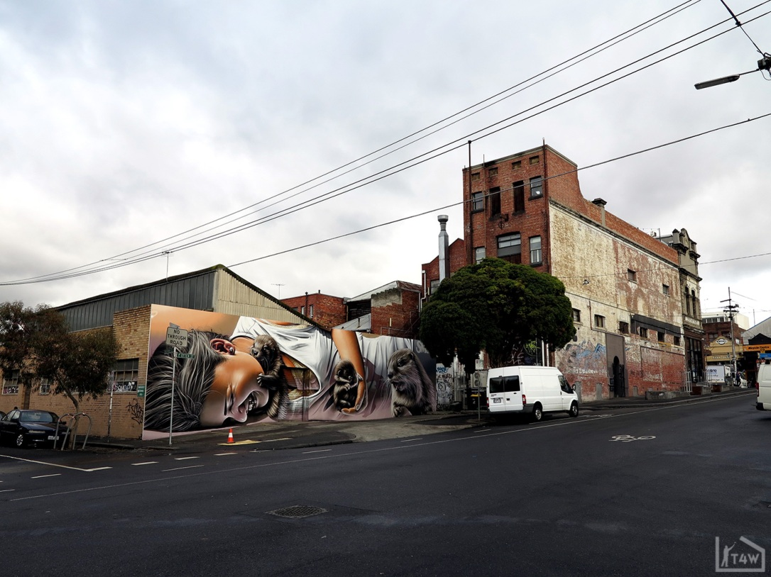 the-fourth-walls-melbourne-street-art-smug-collingwood7