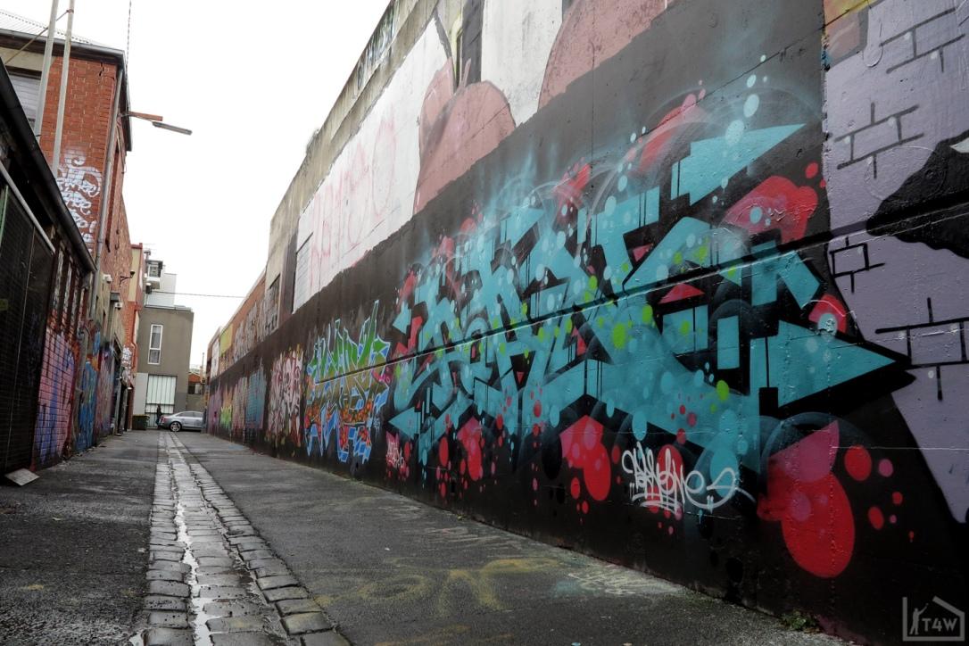 the-fourth-walls-melbourne-graffiti-sup-dvate-petals-daisy-maid-sigs-sabeth-pornograffixxx-fitzroy11