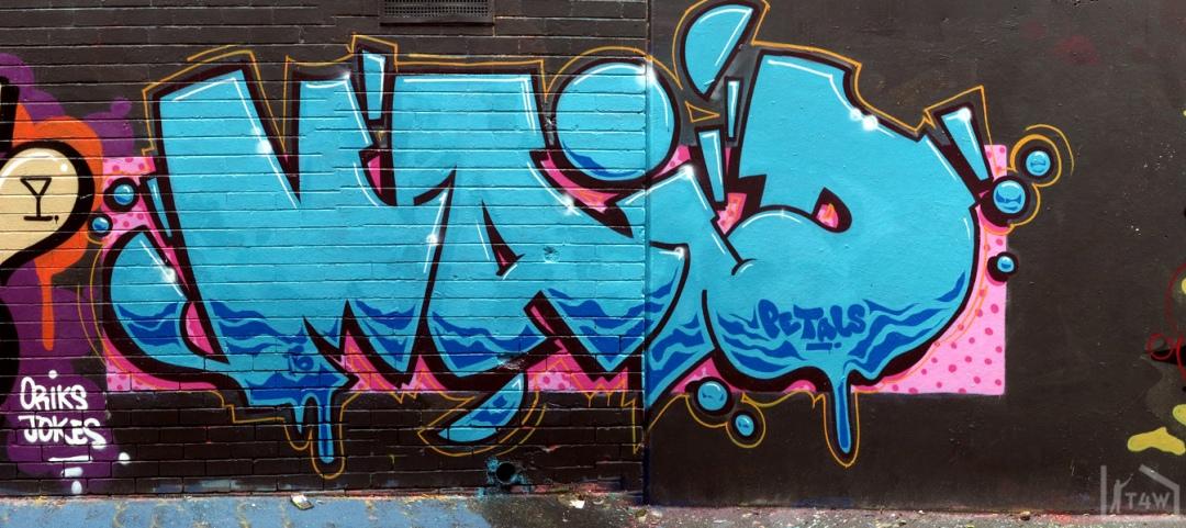 the-fourth-walls-melbourne-graffiti-sup-dvate-petals-daisy-maid-sigs-sabeth-pornograffixxx-fitzroy14