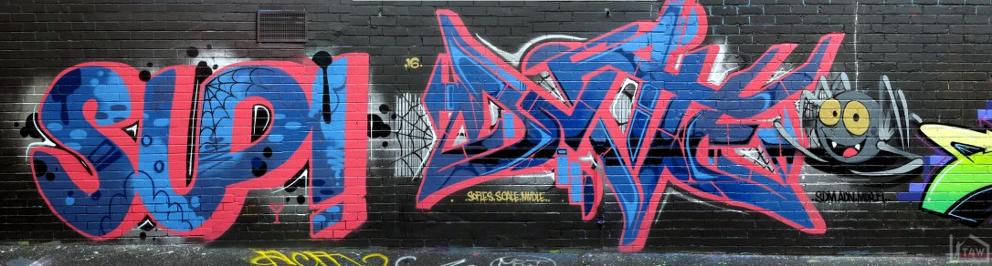 the-fourth-walls-melbourne-graffiti-sup-dvate-petals-daisy-maid-sigs-sabeth-pornograffixxx-fitzroy17