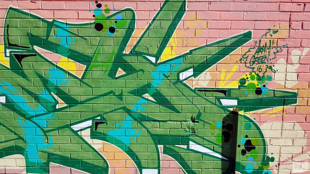 the-fourth-walls-melbourne-graffiti-army-dvate-pornograffixxx-sigs-fitzroy3