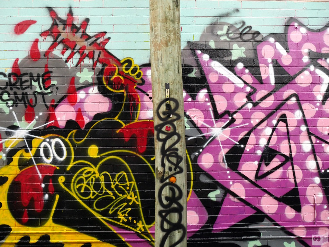 the-fourth-walls-melbourne-graffiti-og23-renks-sage-brunswick5