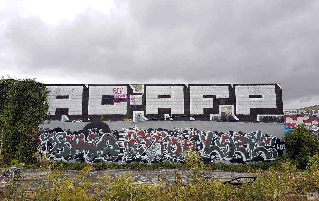 the-fourth-walls-melbourne-graffiti-bolts-renks-lazee-preston